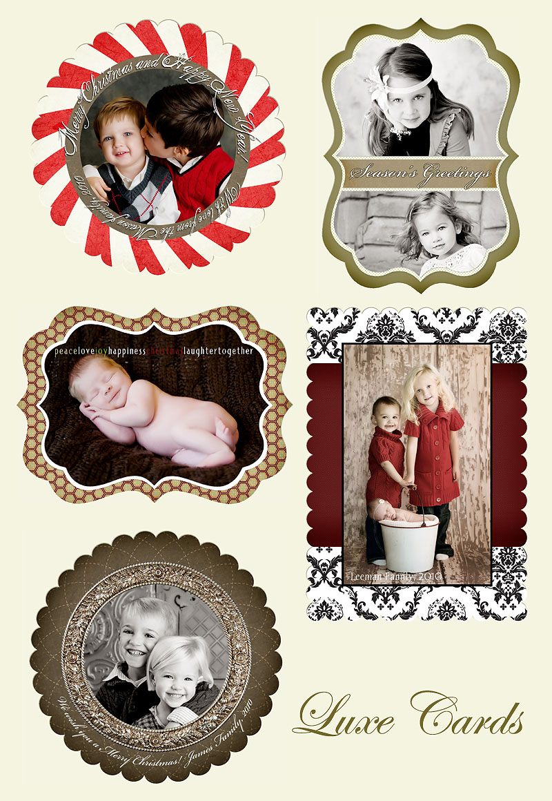 Luxe Holiday Cards – Oakland County Family Photographer