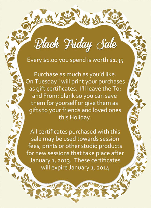 Black Friday thru Cyber Monday Sale – Michigan baby photography