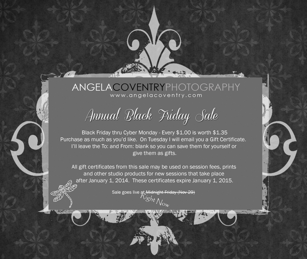 Rochester Hills Photographer – Annual Black Friday thru Cyber Monday Sale