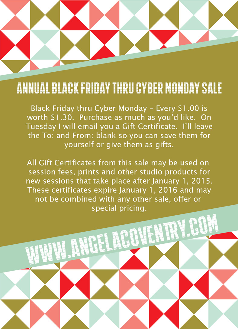 Rochester Hills, MI – Annual Black Friday thru Cyber Monday sale