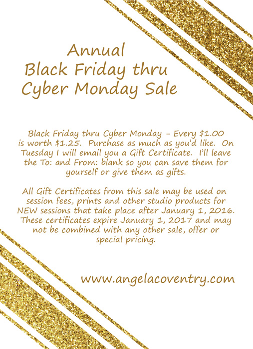 Lake Orion Photographer – Black Friday thru Cyber Monday sale
