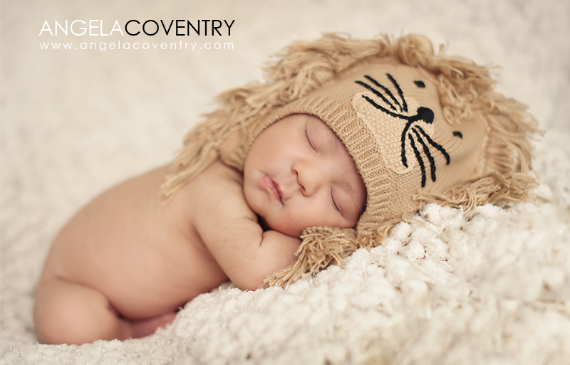 newborn photographer uses lion hat