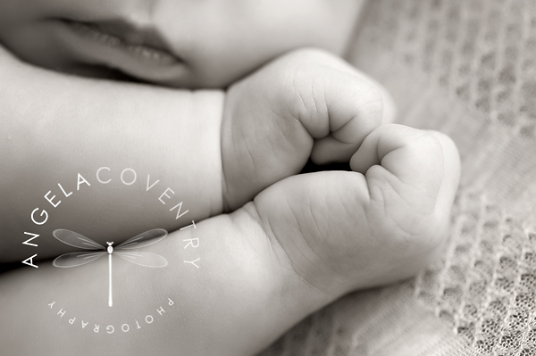 black and white newborn hands