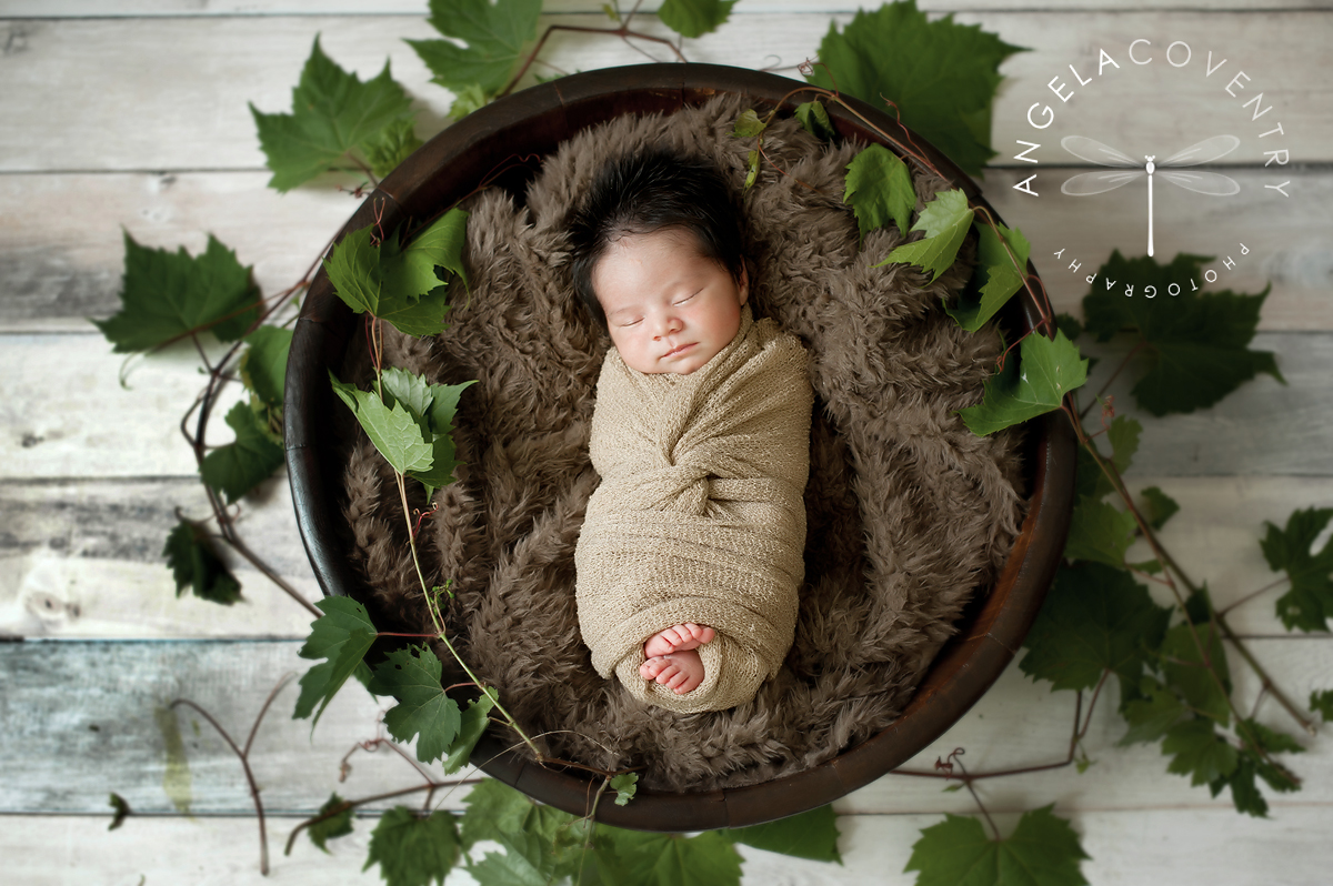 lake_orion_newborn_photographer_vines_1