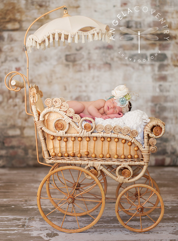 michigan_newborn_carriage_photographer_1