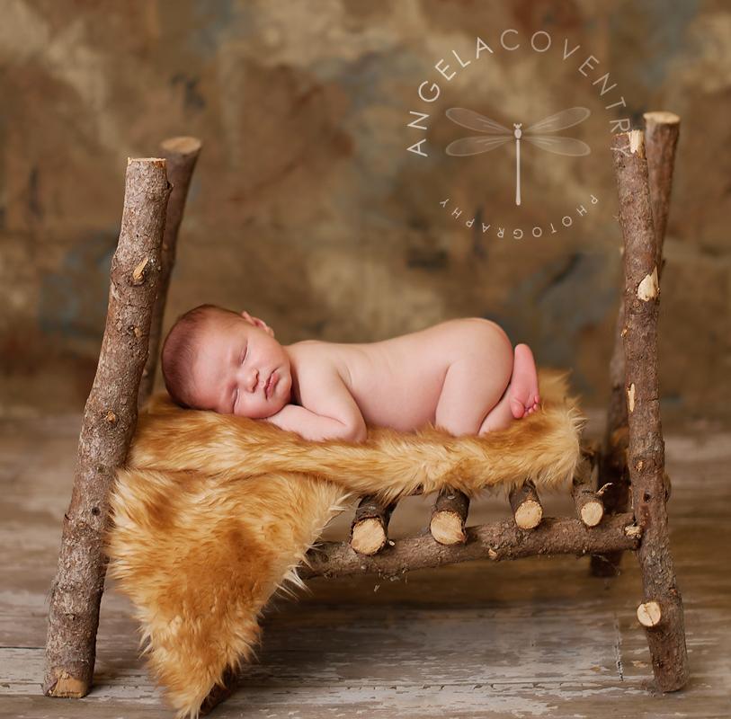 rochester_hills_newborn_photographer_logbed
